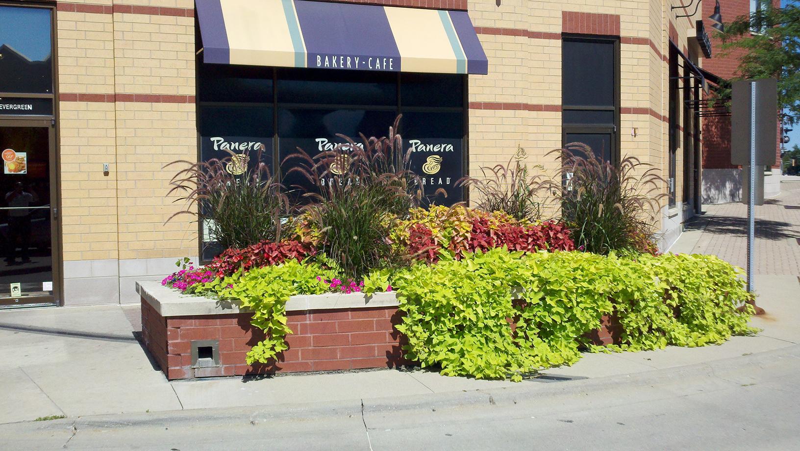 Landscape Maintenance Service